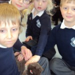 bring your pet to school_06