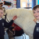 bring your pet to school_26
