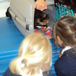 bring your pet to school_36