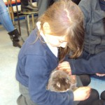 bring your pet to school_37