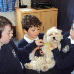 bring your pet to school_44